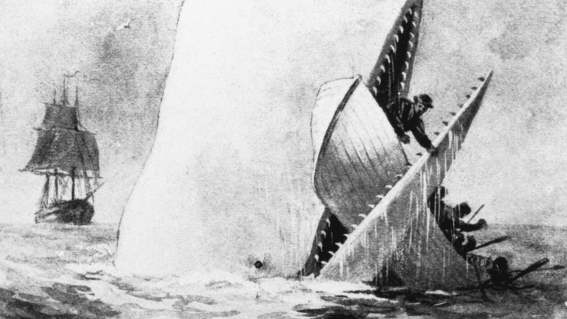 moby dick qoutes ch 36 and 86 Free summary and analysis of chapter 36: the quarter-deck in herman  melville's moby-dick that won't make you snore we promise.