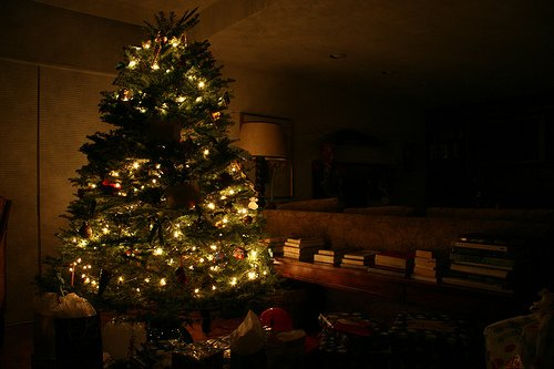 How To Keep The Needles On Your Christmas Tree Science