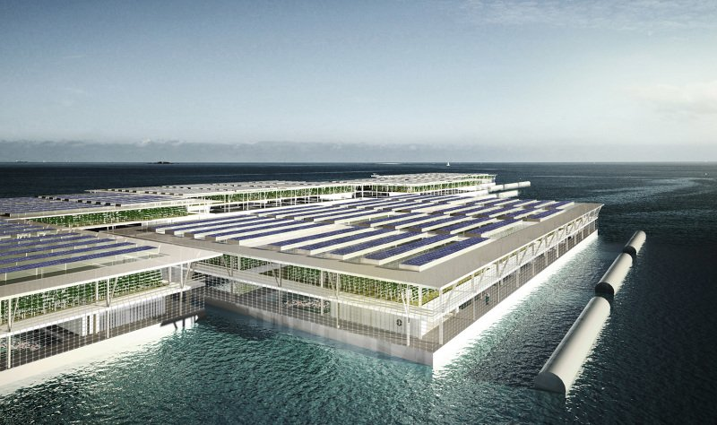 Farms Of The Future Could Be Floating On The Open Seas