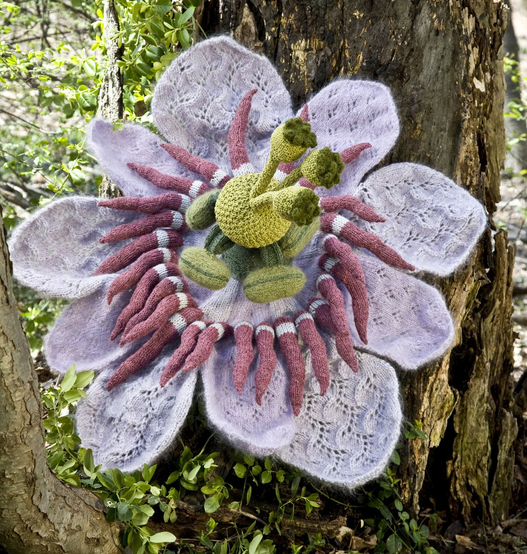 sowing a garden one knit flower at a time arts