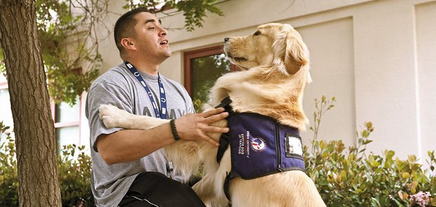 How Dogs Can Help Veterans Overcome Ptsd