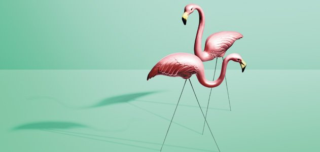 "ap english language pink flamingo essay Analysis essay free essays , ap language rhetorical analysis in jennifer prices critical essay, ""the plastic pink flamingo: a natural history,"" she."