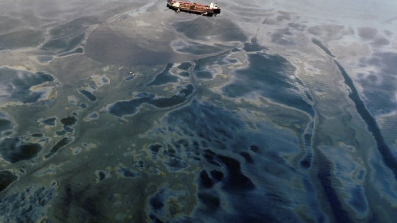 Oil spill essay thesis