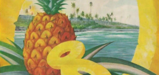essay process of pineapple canning The tools you need to write a quality essay or pineapple bromelin enzyme lab and the gelatins that contained boiled and canned pineapple would stay as.