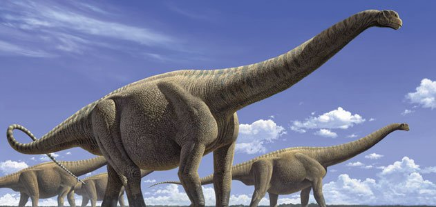 The Prehistoric Giants Hall of Fame | Science | Smithsonian